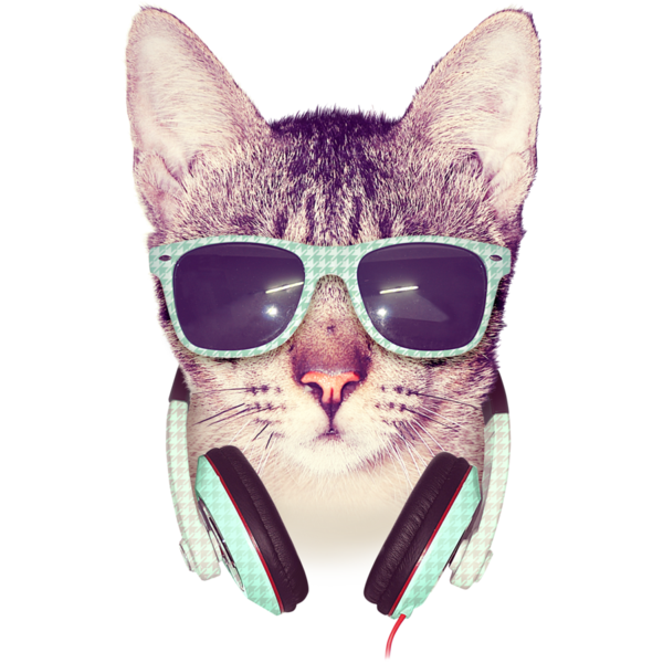 Cool Cat Shirts By Design By Humans On Deviantart Cool Cats Hipster Cat Cat Tshirt