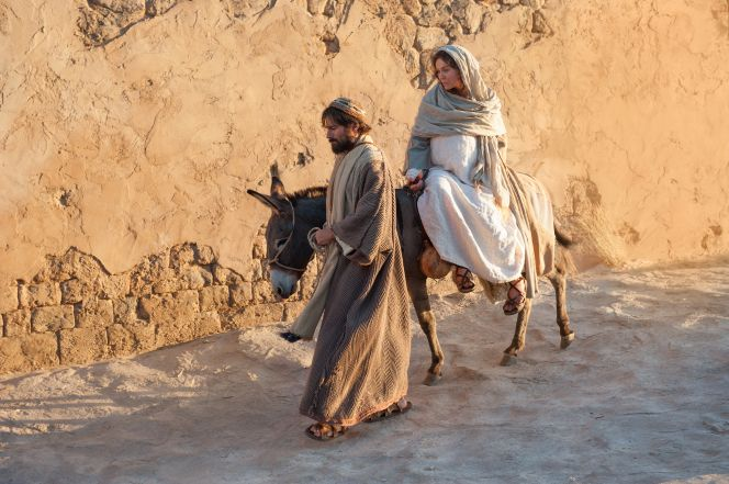 Image result for mary travelling to bethlehem