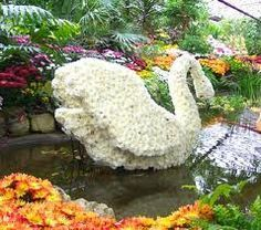 flowering plant topiary -