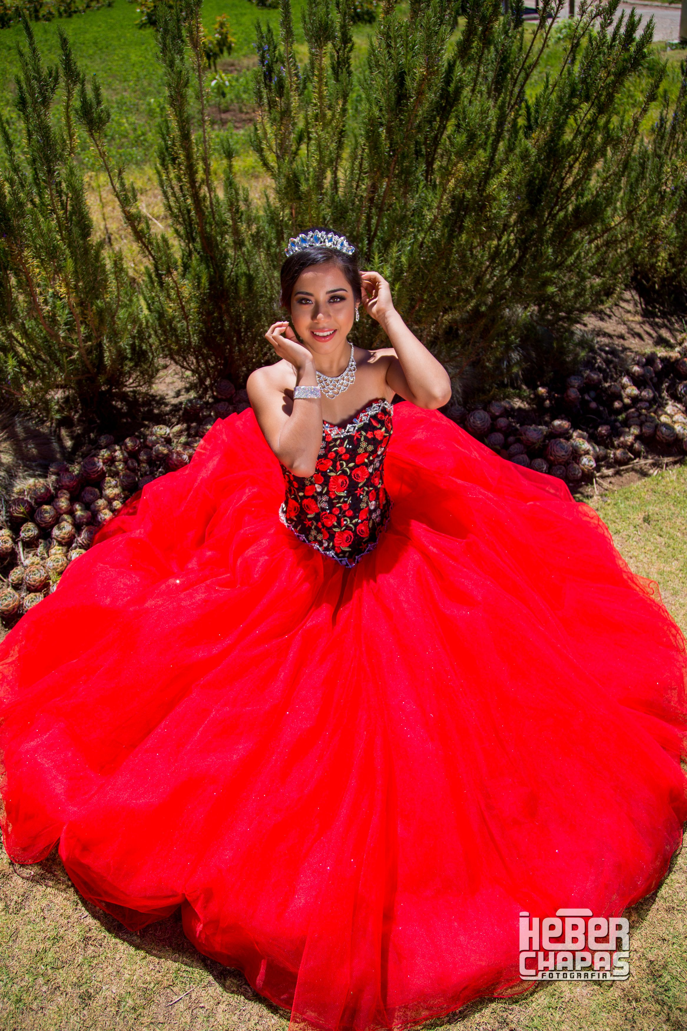 f8cf5633b Hermosa Quinceañera