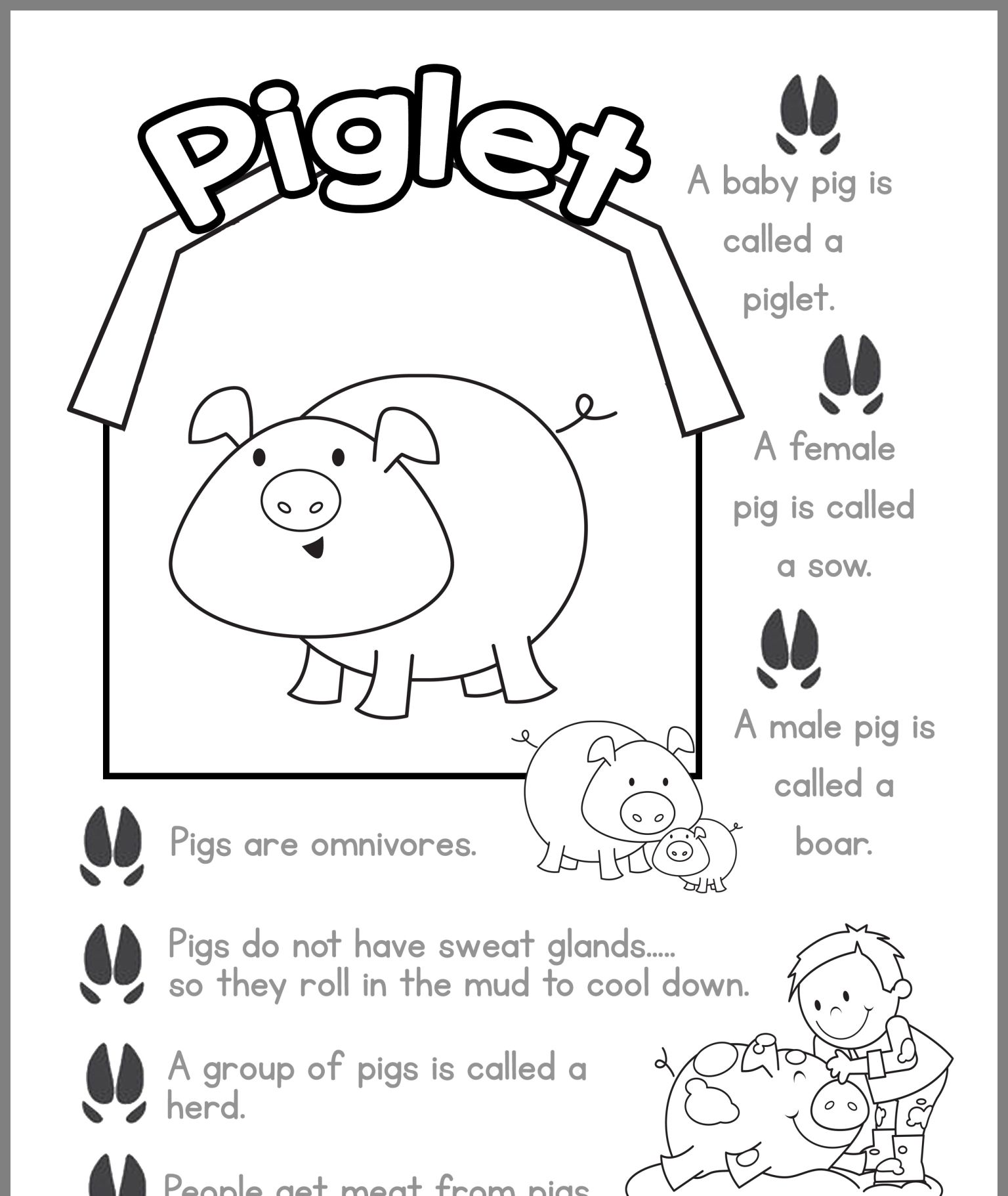 Pin By Jeanne Krow On Farm Baby Farm Animals Farm Preschool Pig Facts For Kids [ 1822 x 1536 Pixel ]