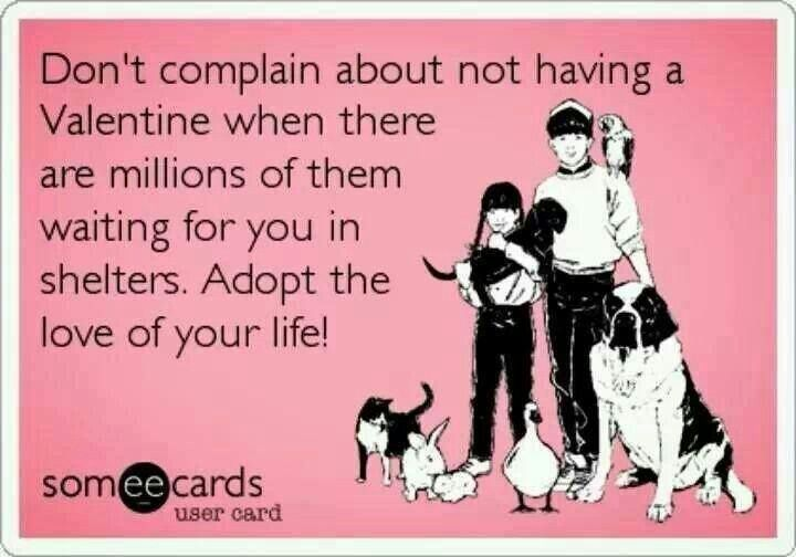 So true...unconditional love.