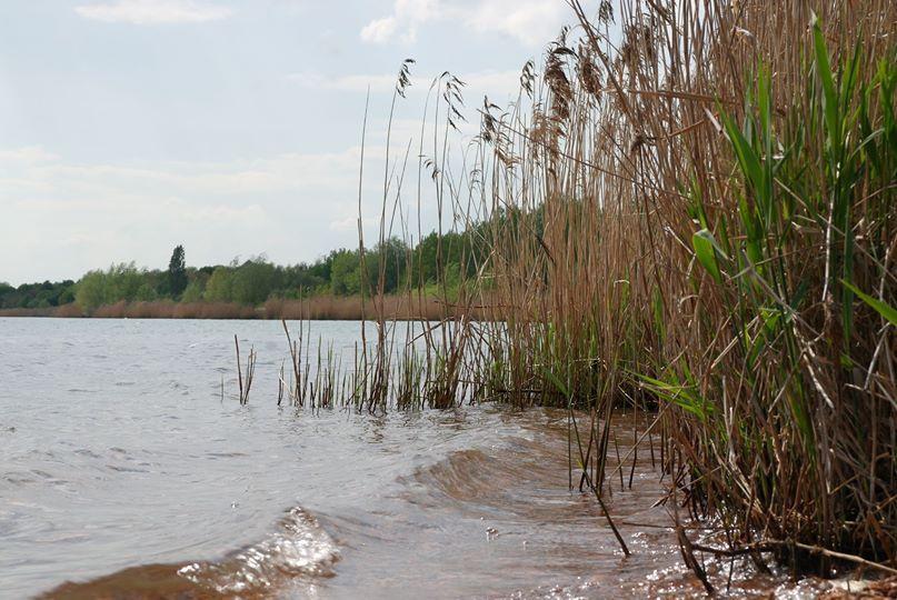am Ufer I