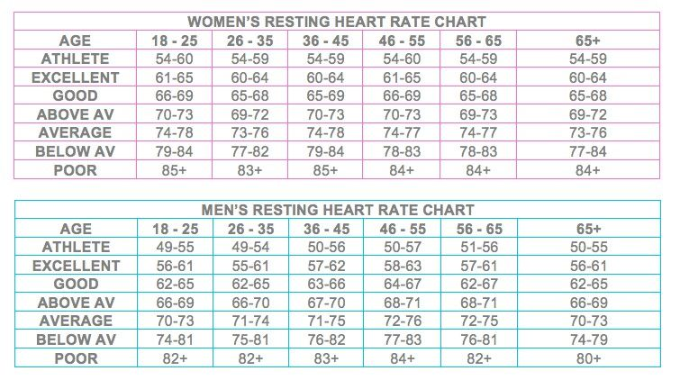 max heart rate chart by age and gender - Yubad