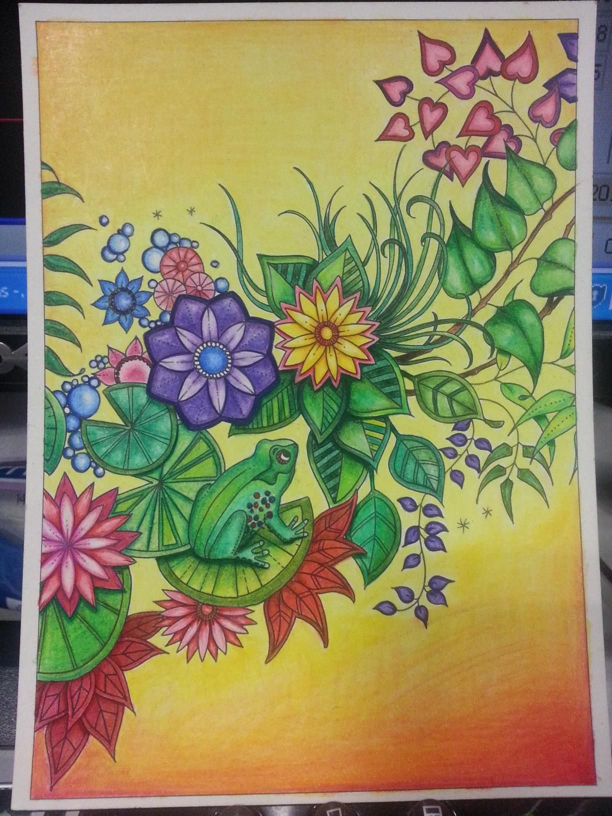 Amazon Secret Garden 20 Postcards 9781856699464 Johanna Basford BooksJohanna Coloring