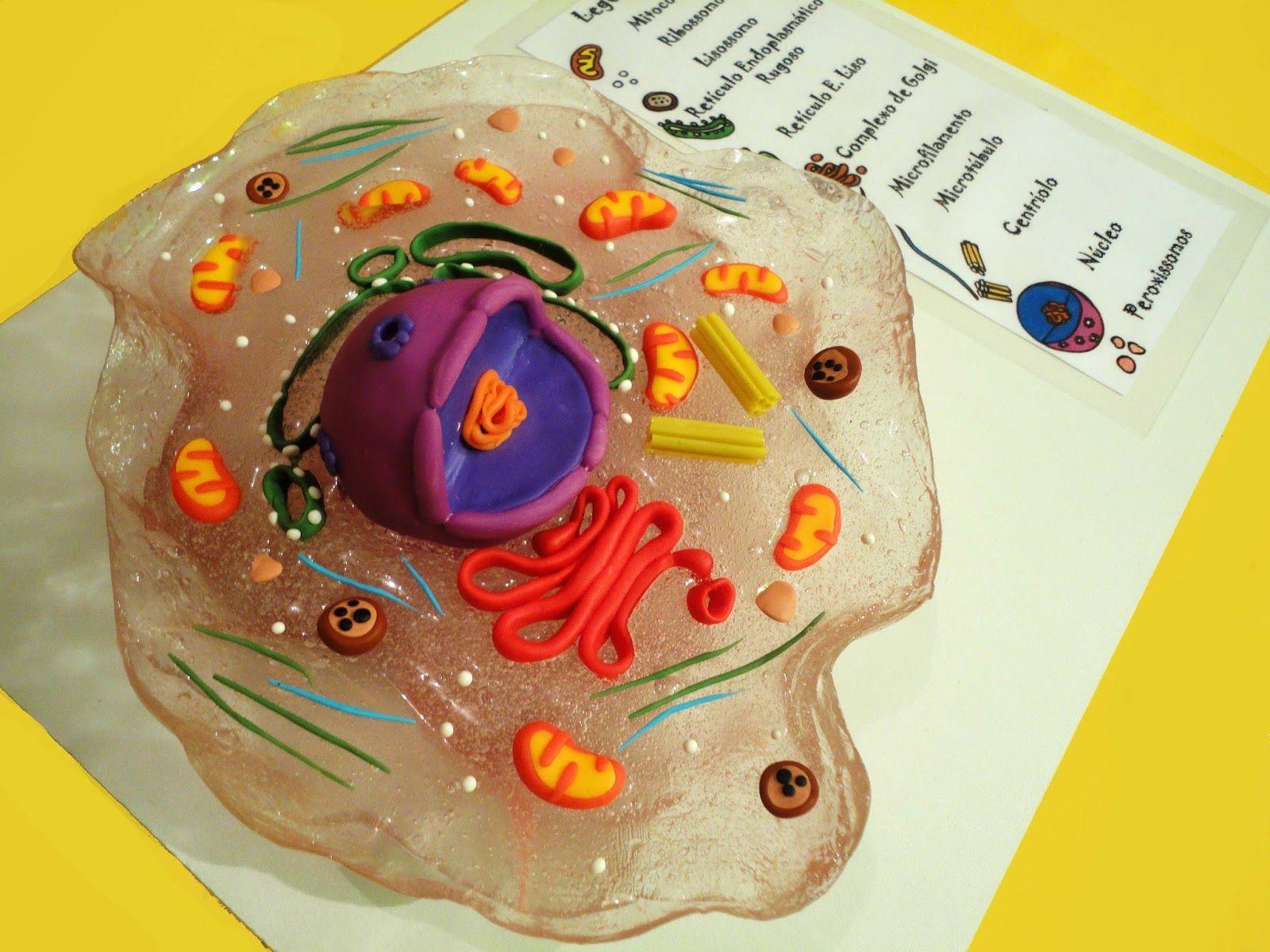 Universo paralelo da arte tutorial acess vel para todos for Como criar peces para consumo humano
