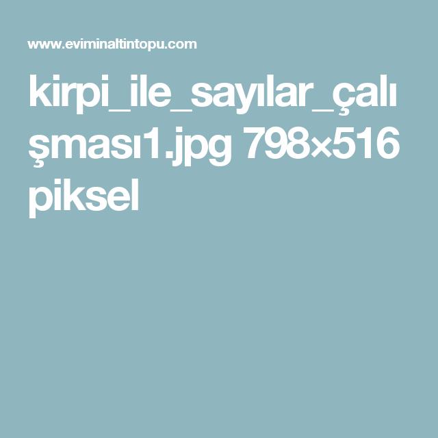 kirpi_ile_sayılar_çalışması1.jpg 798×516 piksel