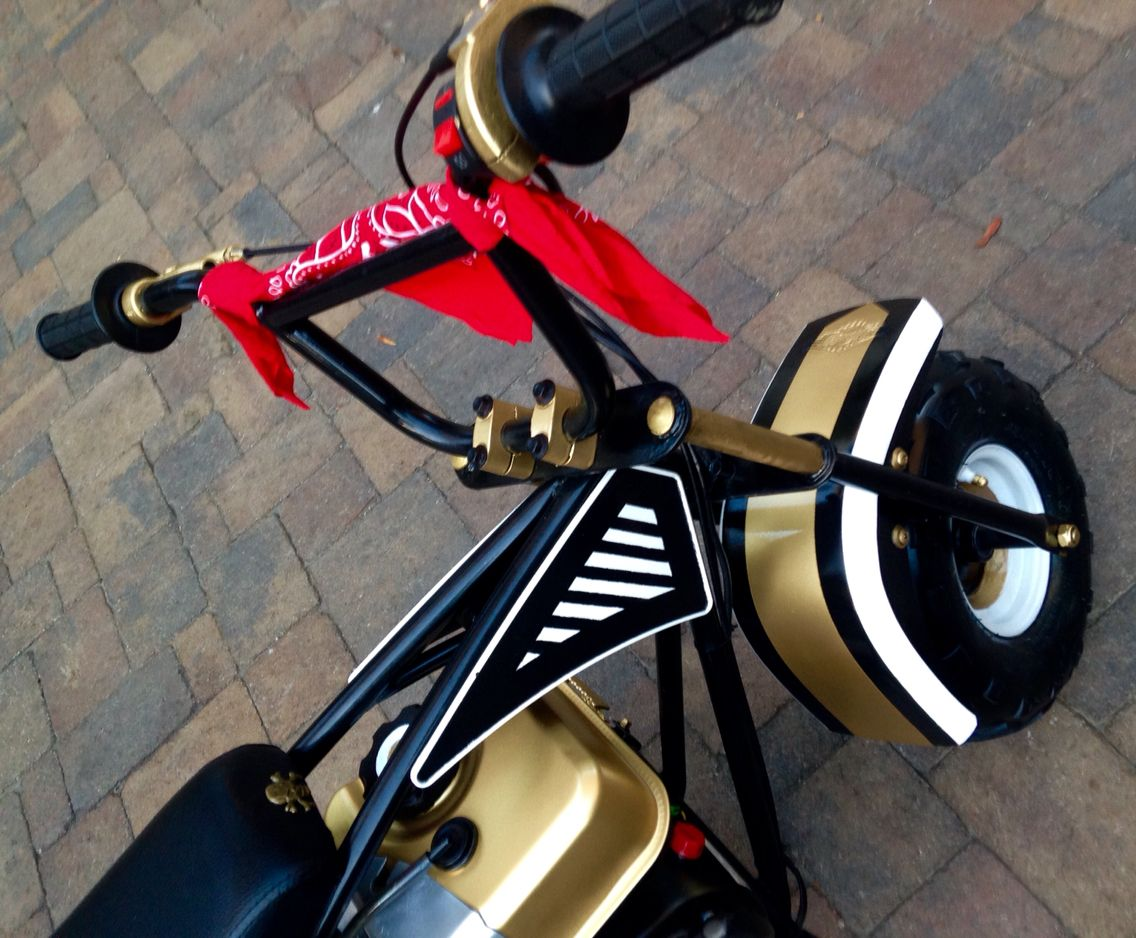 DeSilva Custom Mini Bike. Fabricated Around A Motovox