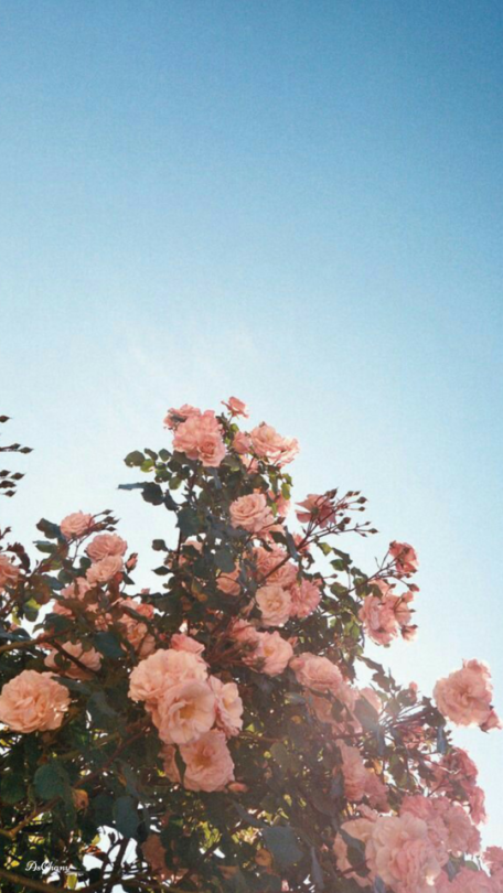 lockscreen | Tumblr