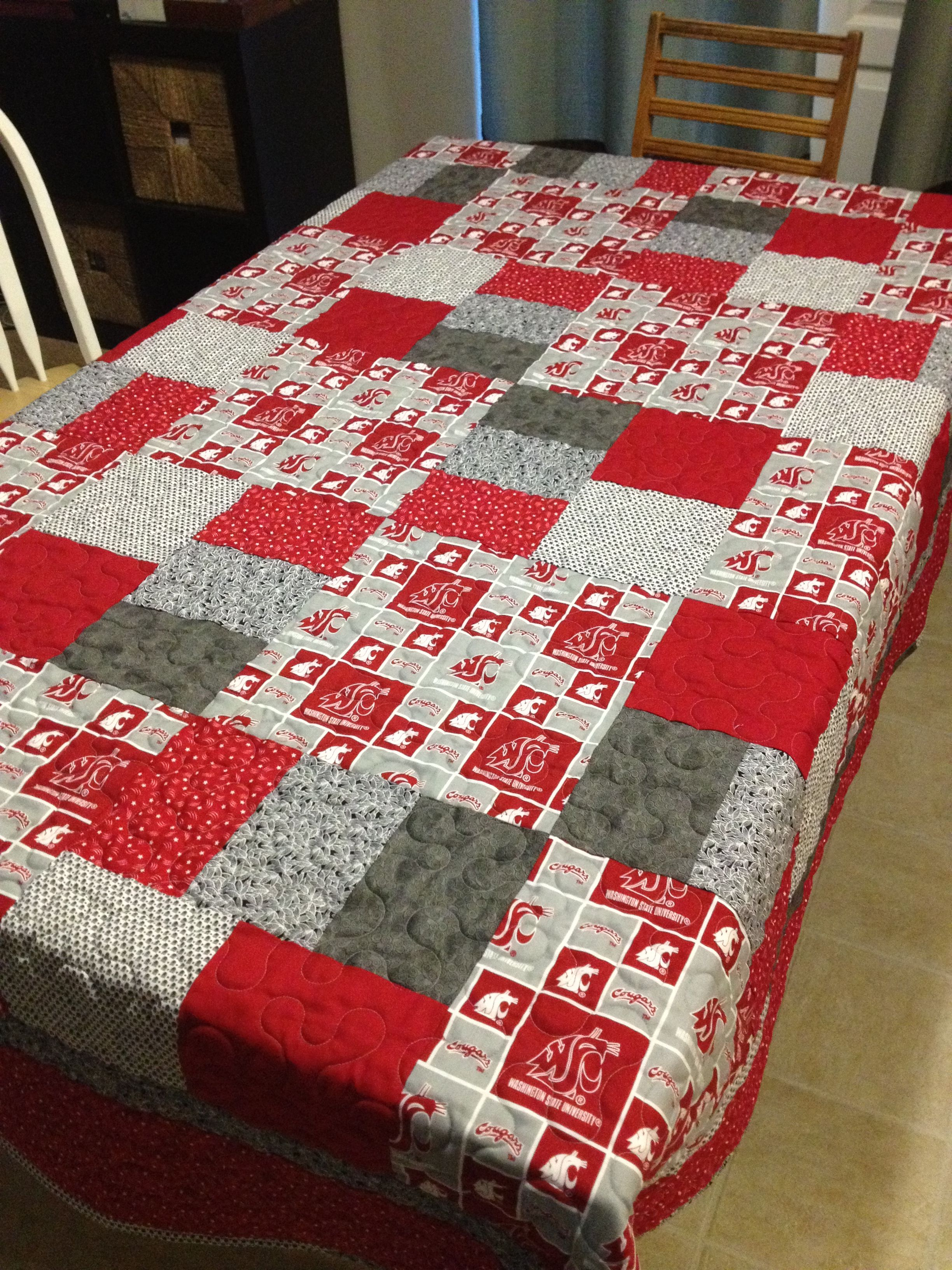 WSU Cougar Quilt-molly@mododesigns.us Pattern by