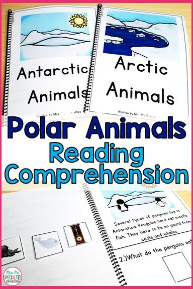 Reading Comprehension Books With Picture & Visual Choices January ...