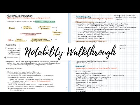 (28) Notability on the iPad Walkthrough & Review ️