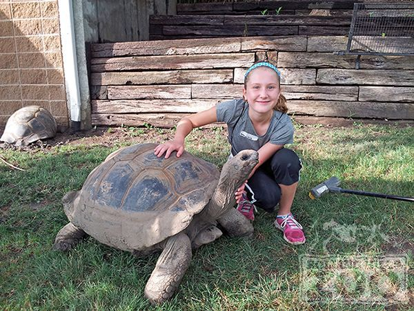 Summer camp is happening at @rollinghillszoo, don't forget to sign up!
