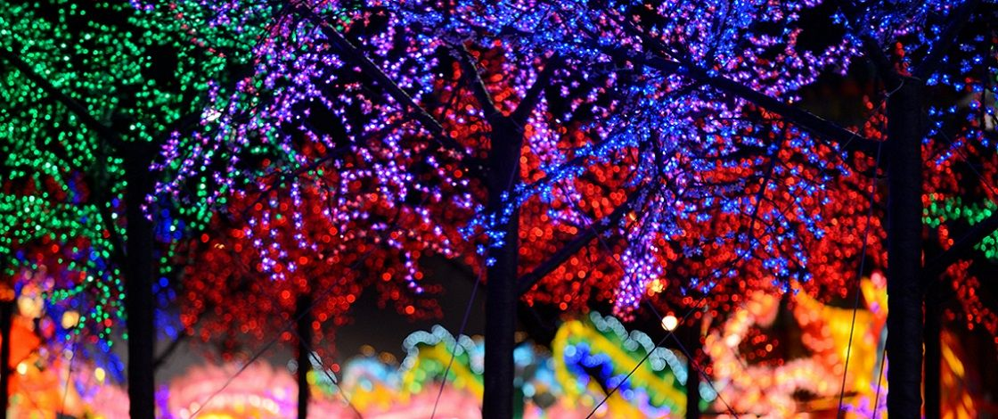 faqs global winter wonderland sacramento christmas light show sacramento holiday lights theme park at cal expo