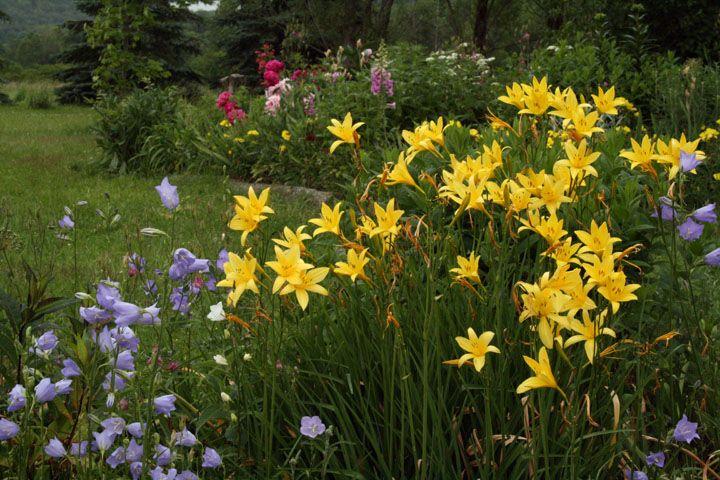 [Two+gardens4Sm.jpg]
