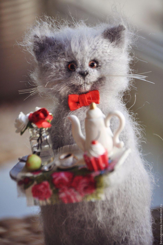 Доброе утро картинки красивые с котами, смешная