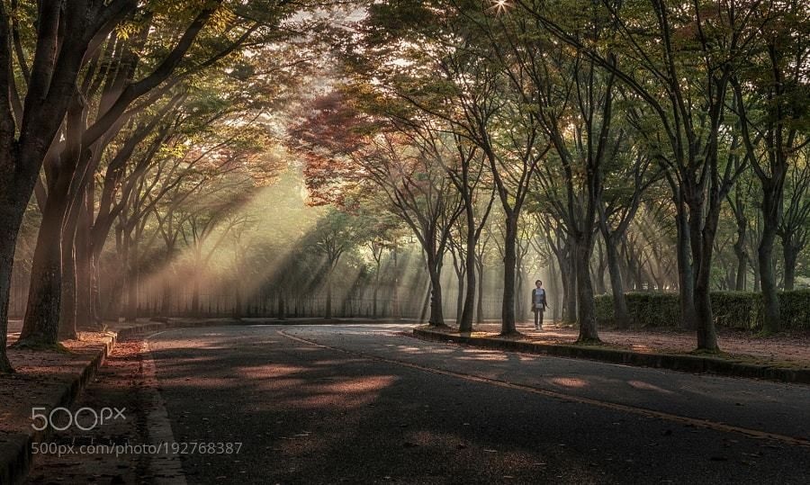 #photography Walk. by c1113 https://t.co/sZI4LUmfHY #followme #photography