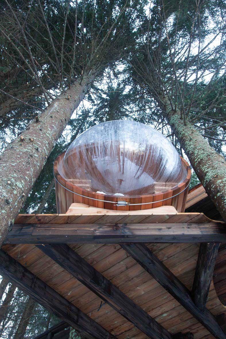 Cabane Dans Les Arbres Face Au Mont Blanc Entre Terre Et Ciel Cabane Dans Les Arbres Cabane Arbre Cabane