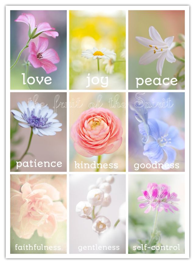 But the fruit of the Spirit is love, joy, peace, longsuffering, kindness, goodness, faithfulness, gentleness, self-control. Against such there is no law. (Galatians 5:22-23 NKJV)