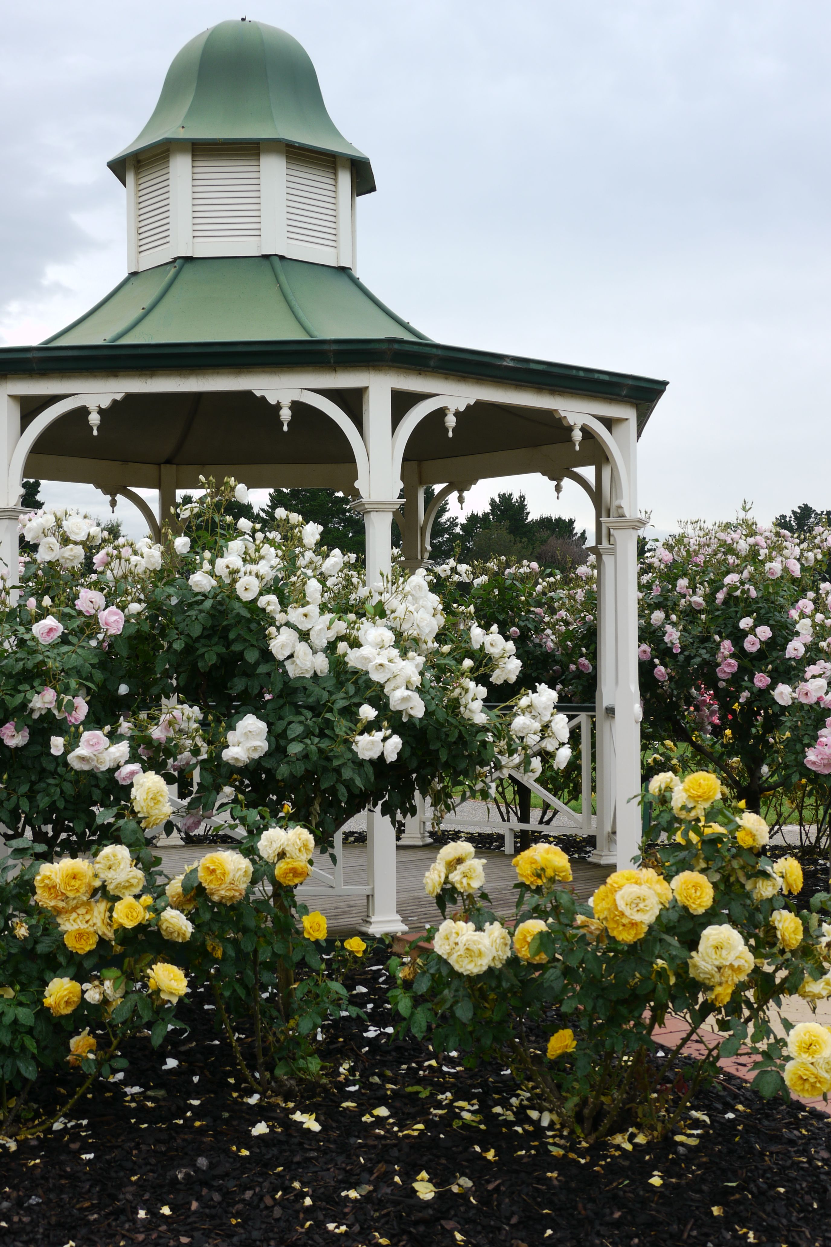 Rotunda, Rose garden, Werribee, Melbourne and some