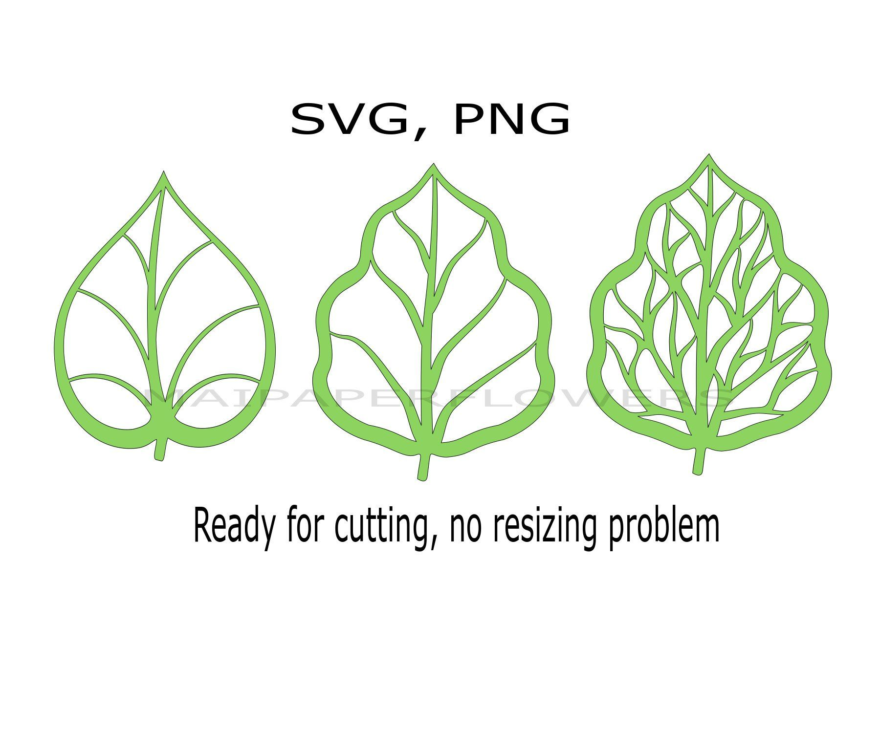 SVGPNG Paper Flower Leaves template Svg leaves template Paper Flowers Leaves Templates Paper Flowers Leaves Svg leaves template
