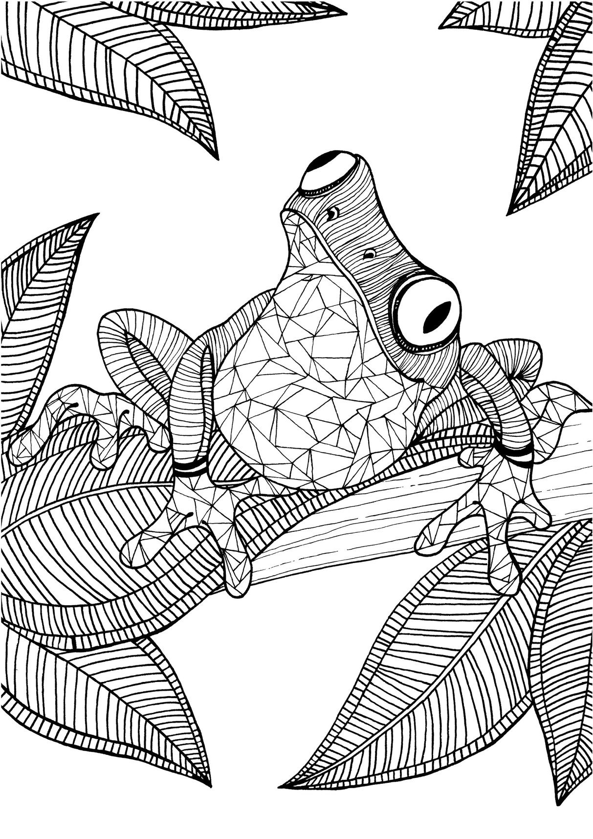 Frog adult colouring page : Colouring In Sheets - Art ... | free online coloring pages for adults animals
