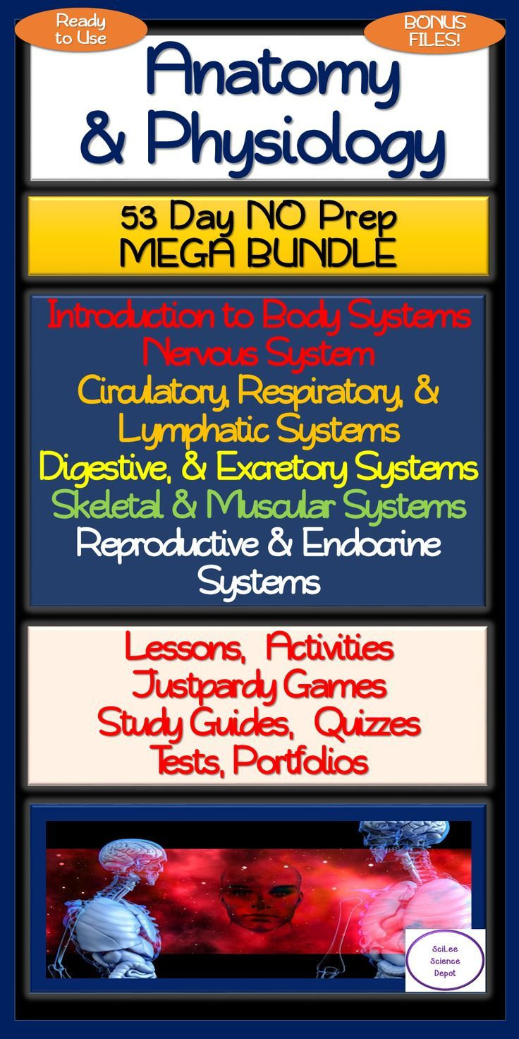 Anatomy & Physiology 53 Day MEGA Bundle Anatomy and