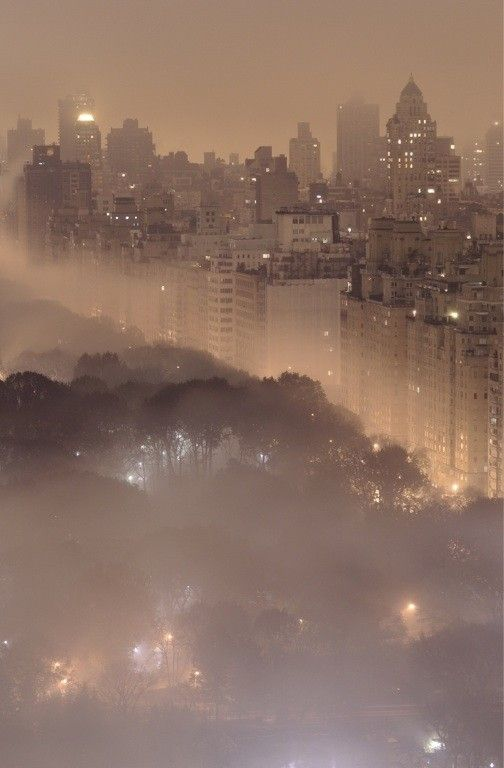 Nyc Fog Fog Weather Clouds New York Mother Nature