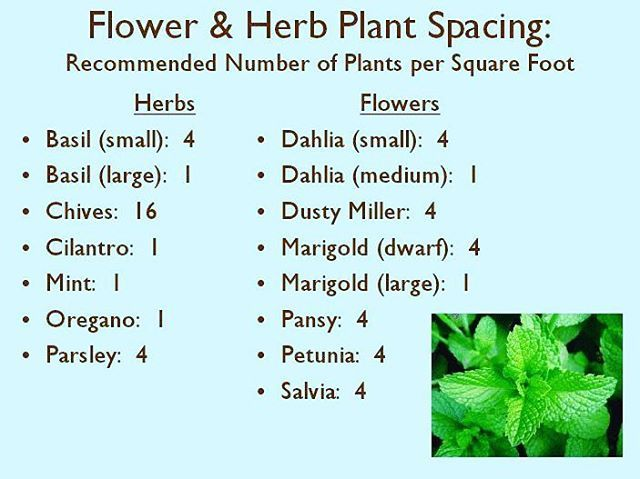 For Your Flowers And Herbs Check Out This Chart Of How Many