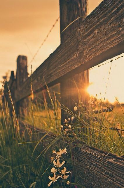 Beautiful Country Backgrounds Pretty Backgrounds Screen Savers