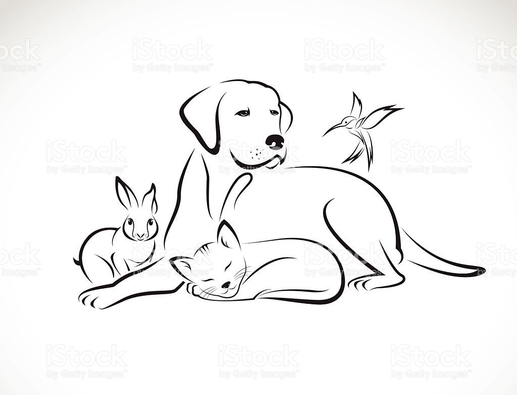 Vector Group Of Pets Dog Cat Bird Rabbit Stock Illustration Download Image Now Cat And Dog Tattoo Dog Outline Dog Tattoos