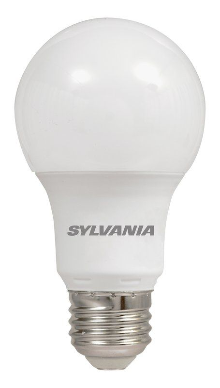 Led Daylight Bulb: 6 Watt (40 Watt Equivalent), A19 LED, Non-Dimmable Light