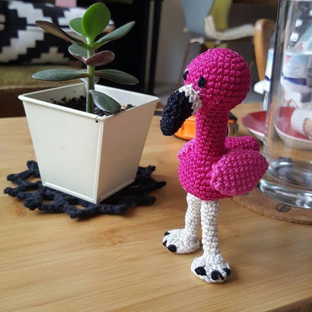 Kostenlose Häkelanleitung für einen Flamingo! | Häkeln | Pinterest ...