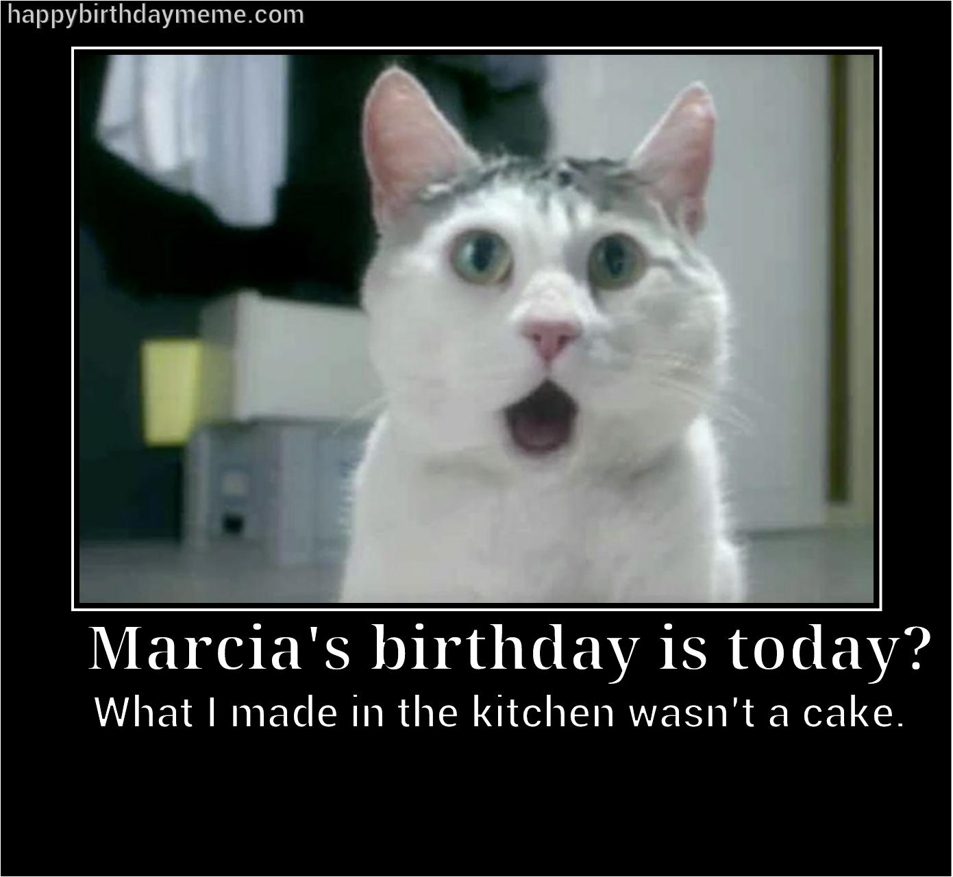 MEME Happy Birthday Meme Best cat memes, Cat memes