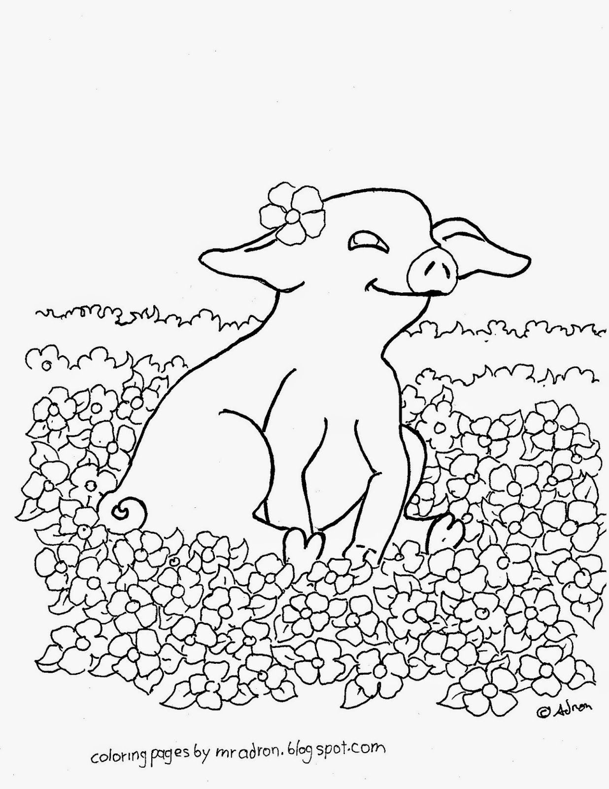 Baby Pig Drawing Coloring Coloring Pages