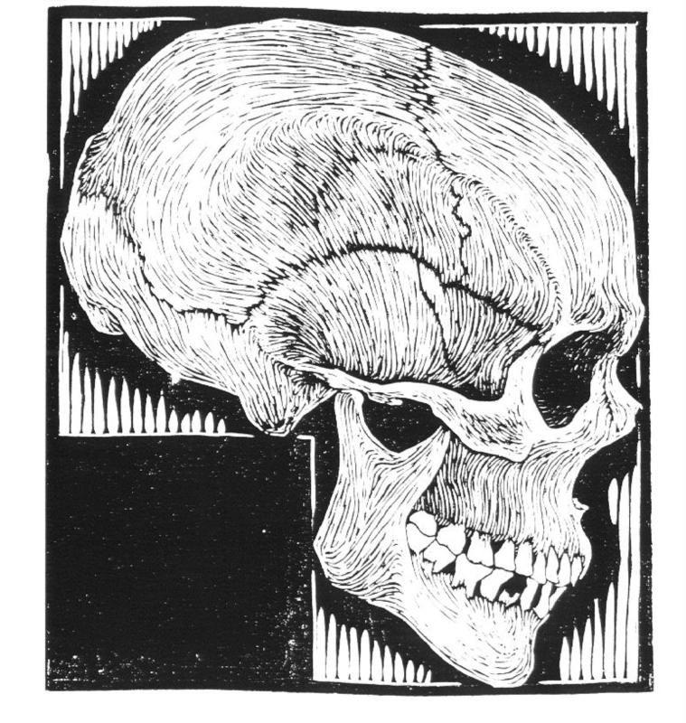 Skull by M.C. Escher (1919) | Anatomy & Art | Anatomie & Kunst ...