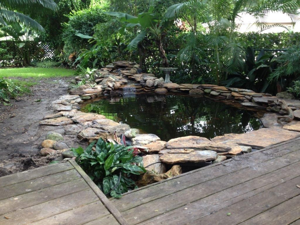 Koi pond construction koi pond dunedin click to for Natural koi pond