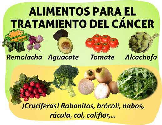 Resultado de imagen de cancer dieta natural