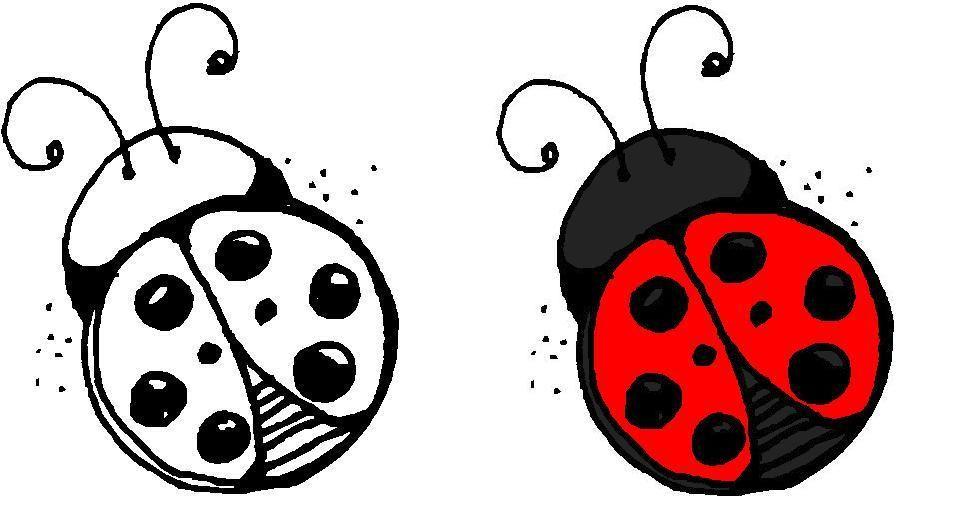 Pin By Kaylie Coleman On Tattoos Lady Bug Tattoo Ladybird Tattoo Bug Tattoo