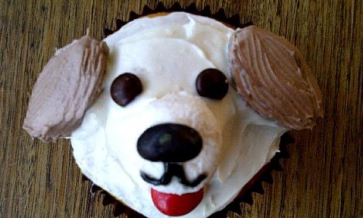 30 Impressive Last Minute Cake Stall Recipes Puppy Cupcakes