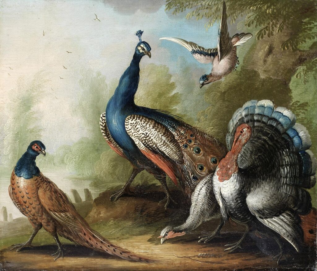 A peacock, pheasant, turkey and jay by a river. Oil on