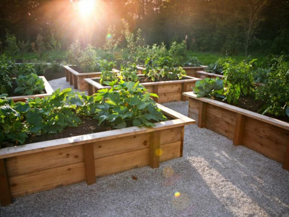 Beau Tips For Creating Raised Bed Planters