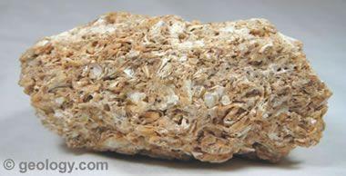 coquina | Geology | Rock, Rock...