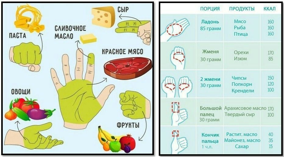 Расчет Порции Для Похудения. Принцип тарелки: каким должен быть размер порции при правильном питании