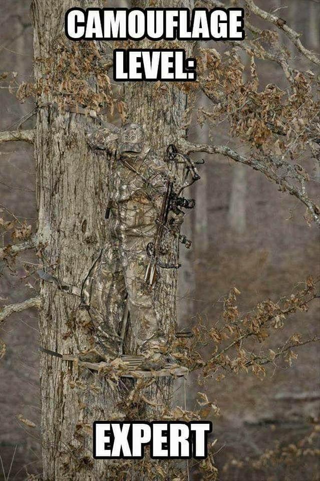 Wenn Sie ein Bogenschütze sind, sehen Sie sich diese Archer-Sammlung an … – #Archer #check #collect …