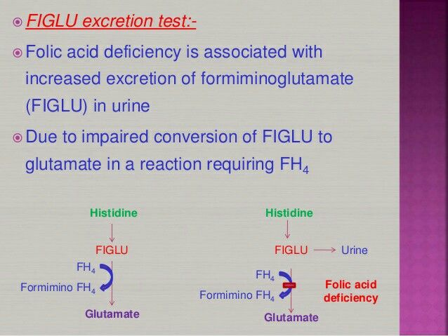 Figlu excretion test for folic acid biochemistry pinterest figlu excretion test for folic acid fandeluxe Choice Image