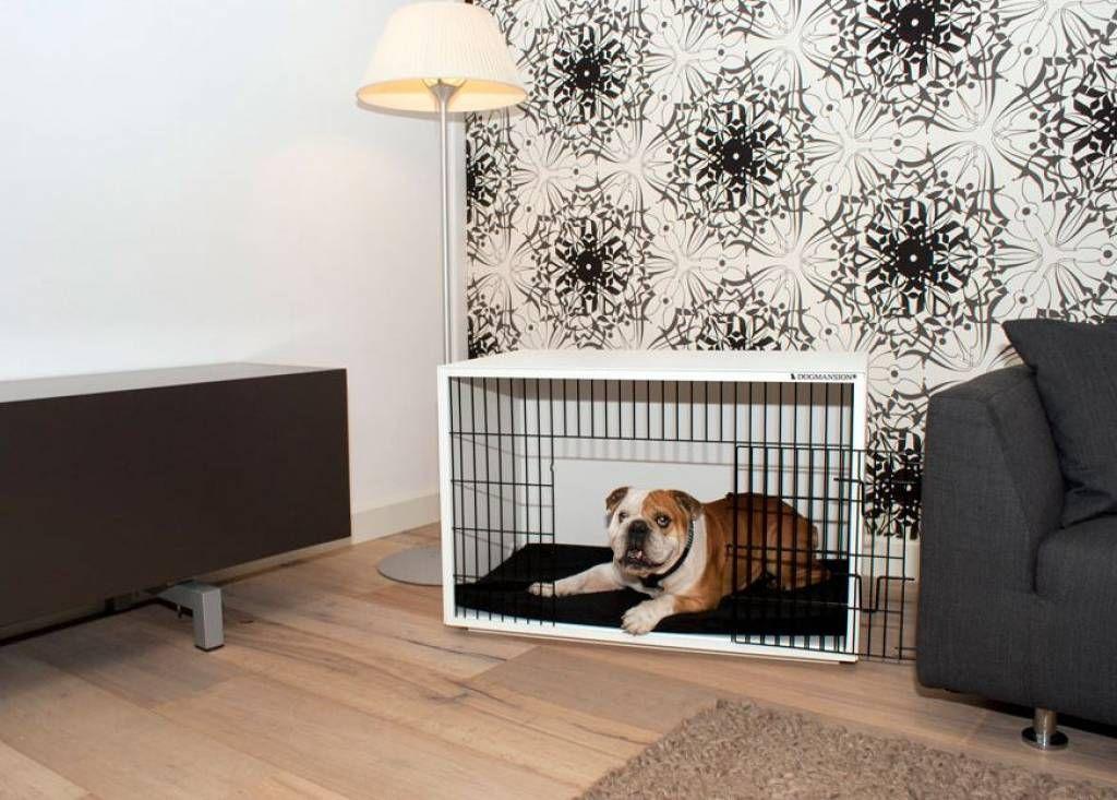 Design Voor Honden : Design honden bench kamerkennel paco