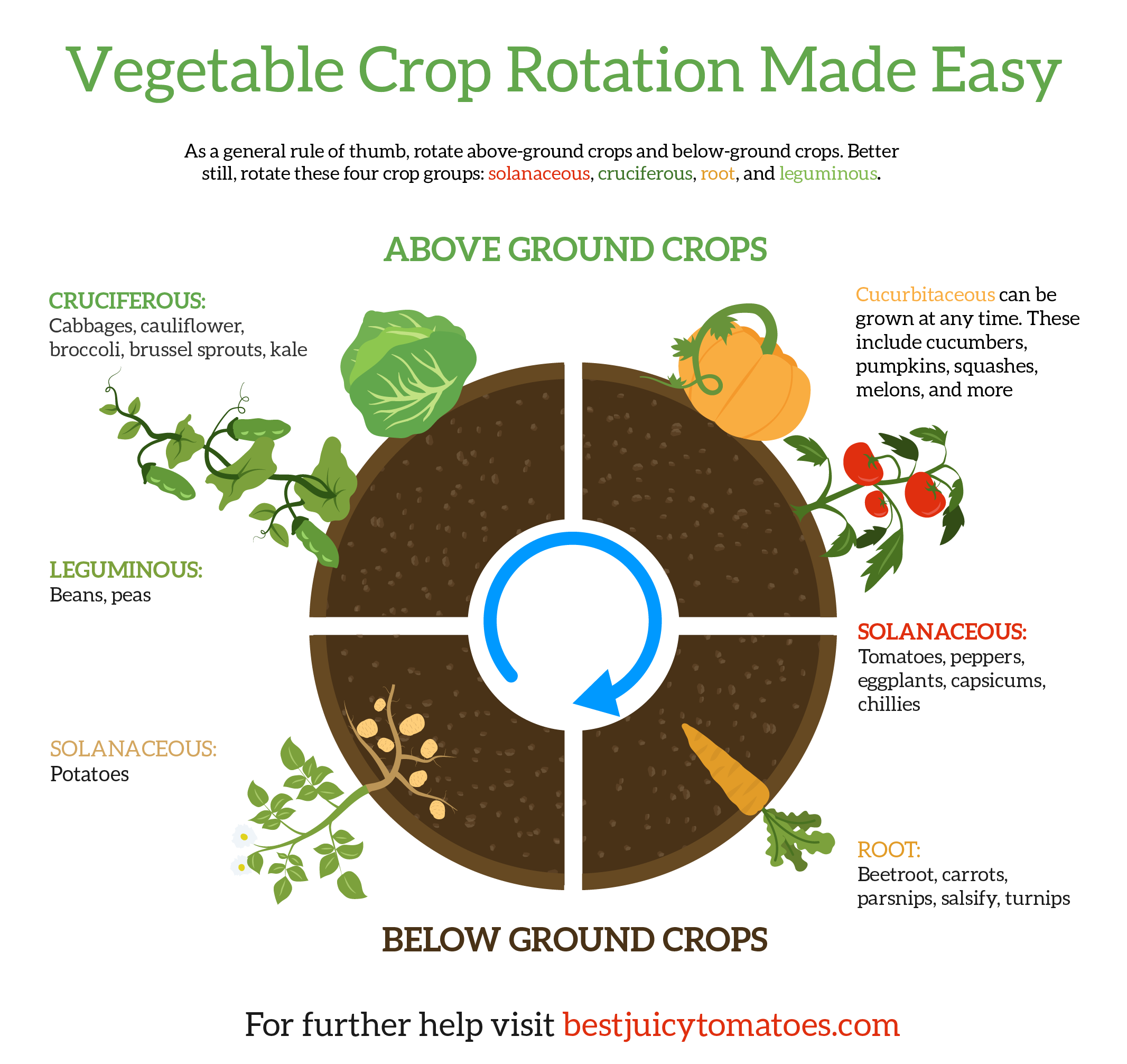 What To Plant After Tomatoes Mastering Crop Rotation How To Grow Tomatoes Crop Rotation Growing Tomatoes Growing Tomatoes In Containers
