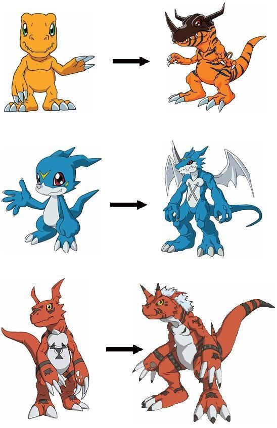 Main Character Digimon, Rookie to Champion - Digimon