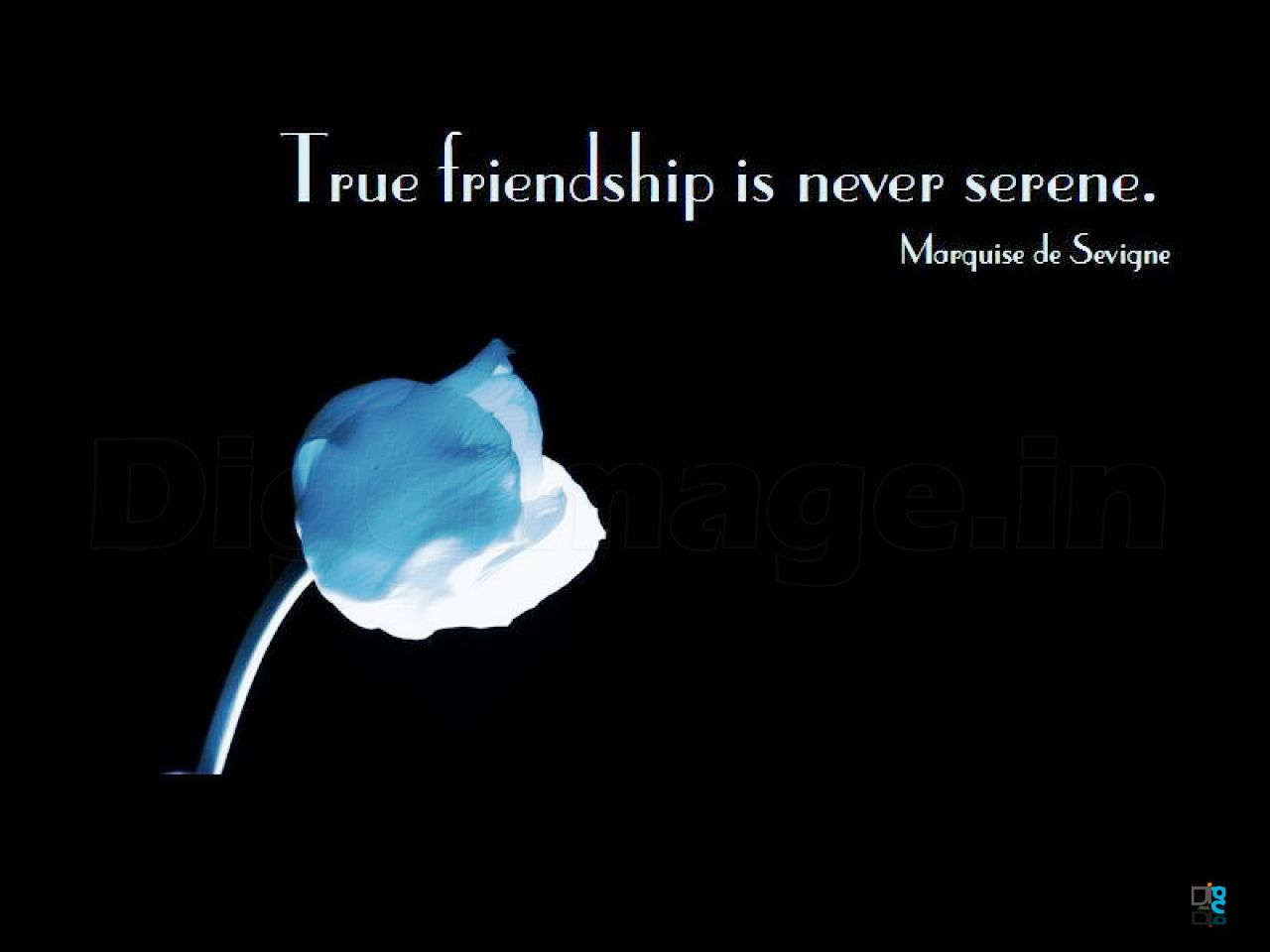 free wall photos for facebook |  serene best friends wallpapers